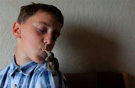 cute 12 year old boys an unusual friendship between a sparrow and a 12 year old
