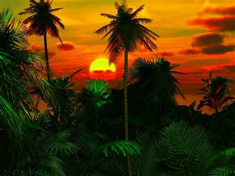 Earth Wall Mural jungle sunset things for my wall pinterest