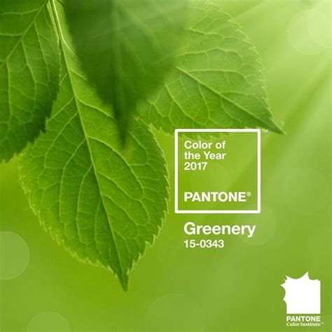 pantone color of the year 2017 announcement color palette american institute of interior design