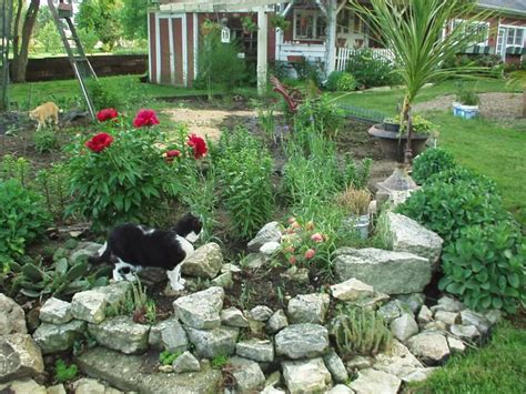 Small Rock Garden Ideas Need Ideas For Rocks Birds Blooms Rock Garden Pics
