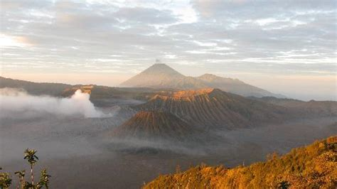 Calendar Comparison Java Bromo Cottages Hotel Updated 2016 Reviews Price