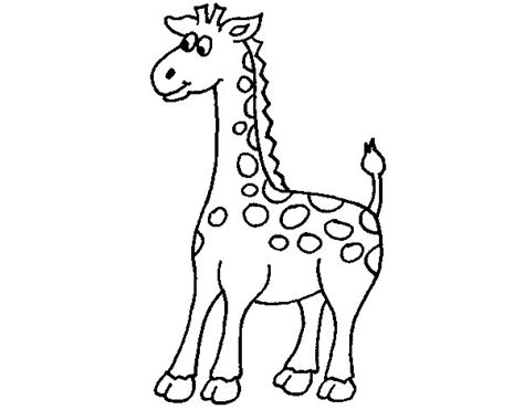 imagenes de jirafas faciles de dibujar dibujo de jirafa pintado por leitomp en dibujos net el d 237 a