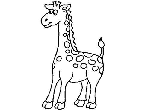 dibujos infantiles para colorear de jirafas dibujos mascaras de jirafas imagui