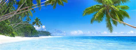 Strand Meer Bilder by Bilder Palmen Sonnenuntergang Palmen Bild Foto