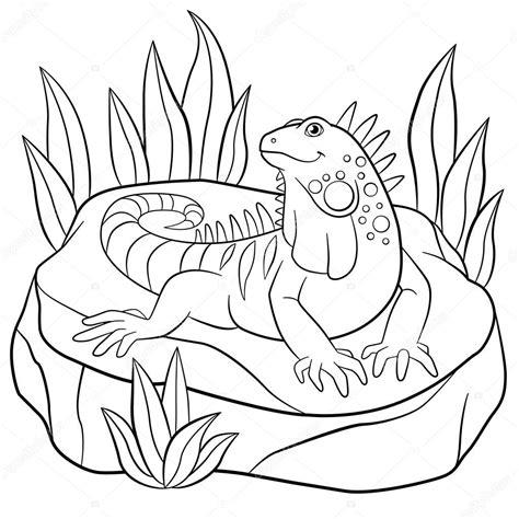 imagenes para pintar iguana dibujos para colorear linda iguana se asienta sobre la