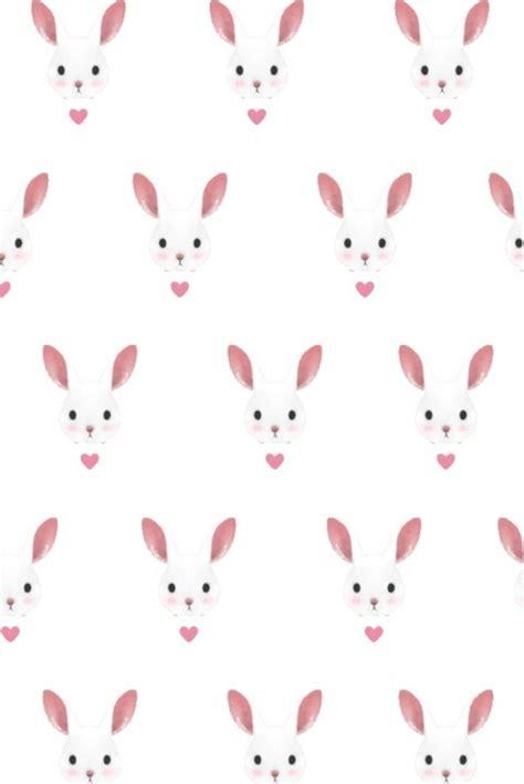 wallpaper pink rabbit rabbits background iphone pinterest bunnies rabbit