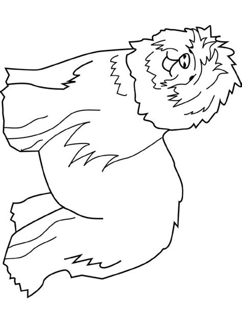 coloring pages of sheep dogs sheepdog coloring sheepdog coloring