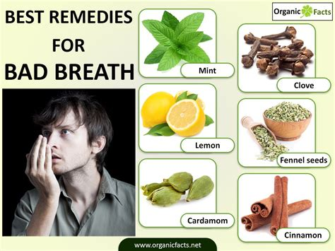 Horrible Smell When Detoxing From by Bad Breath Analysing Common Myths And Misconceptions And