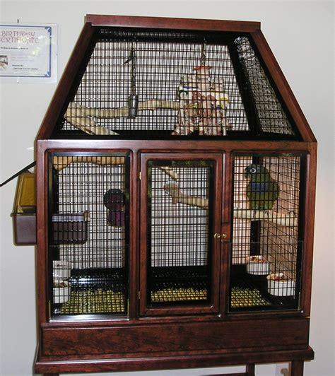 best bird cages conure for parakeets