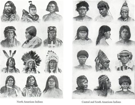 cartoons on native americans of central and south america differences north american vs central american and south