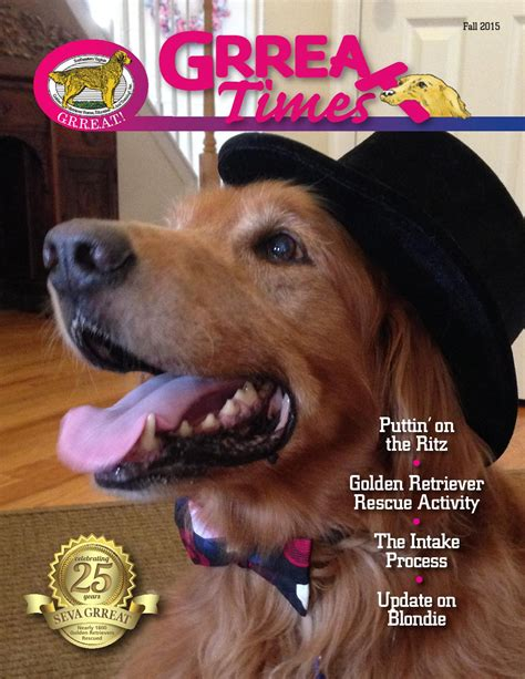 seva golden retriever rescue grreat times fall 2015 by southeastern virginia golden retriever education and