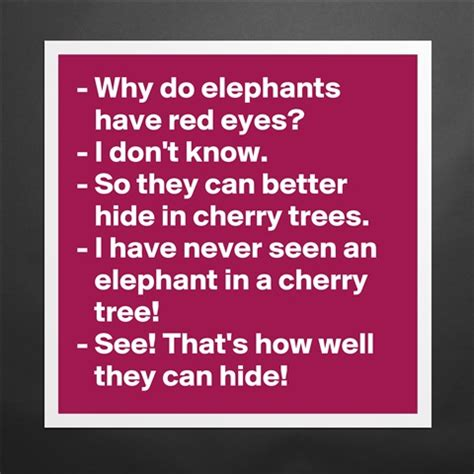And Mayer Dont Hide It Well by Products 171 Why Do Elephants I Don T