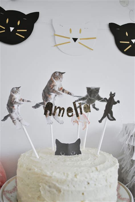 cat themed birthday decorations 12 of the most clever measures take to a cat