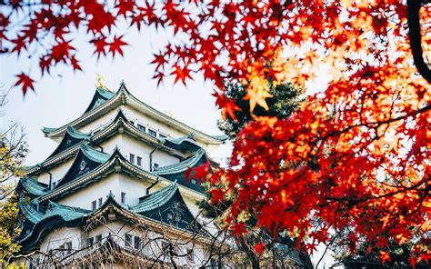 how to fly to japan for only 392 trip travel leisure