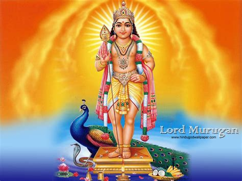 Themes God Murugan | free god wallpaper lord murugan wallpapers for desktop
