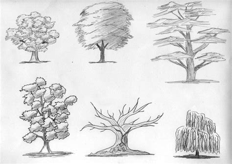 sketched tree sketch trees by digikijo on deviantart