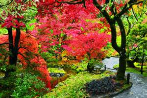 Flowers Paradise Ca - butchart gardens a mine site is transformed into a