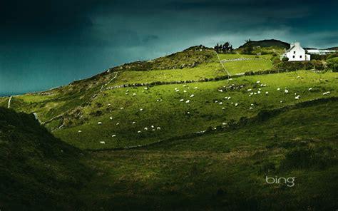 green wallpaper ireland sheep s head ireland full hd wallpaper and background