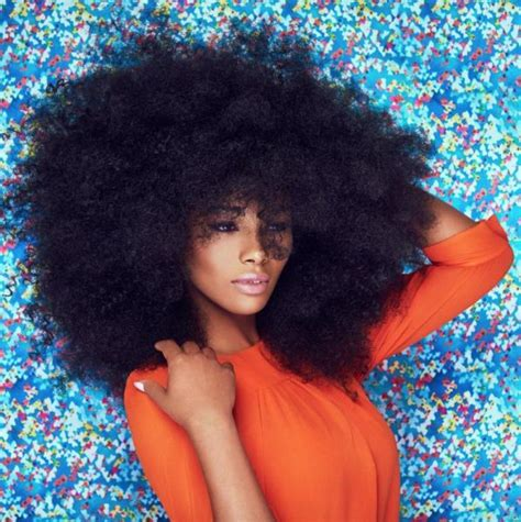 afro hairstyles pinerest 17 best ideas about natural afro hairstyles on pinterest
