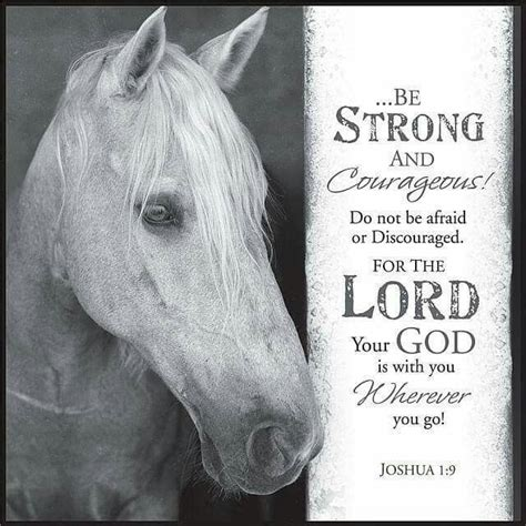 printable horse quotes 12 best horses and bible verses images on pinterest