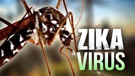 imagenes memes del zika zika informaci 243 n y prevenci 243 n para viajeros medicina