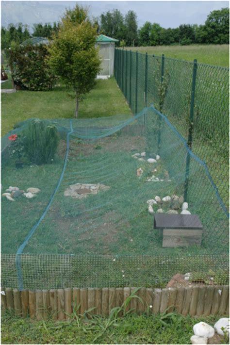 tartarughe in giardino recinto in giardino per tartarughe allevamento