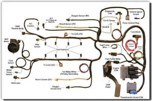 6 0 ls motor wiring diagram 6 free engine image for user