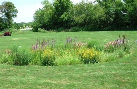 backyard conservation best 25 soil and water conservation ideas only on pinterest