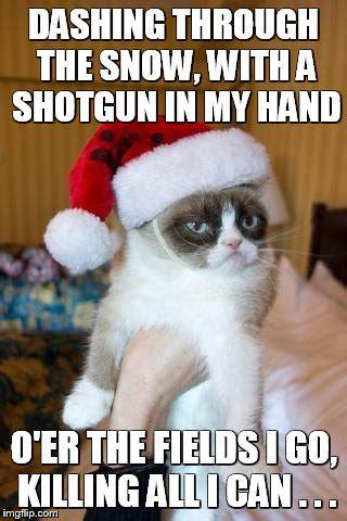Grumpy Cat Snow Meme - grumpy cat christmas memes imgflip