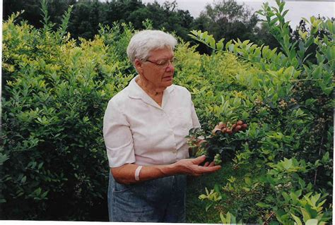Master Gardener by Hernando County S Master Gardeners Looking For New