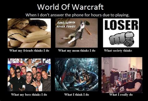 World Of Warcraft Meme - image 268260 what people think i do what i really