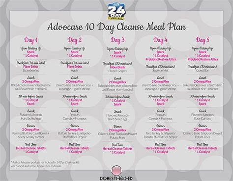10 Day Detox Diet Plan by 10 Day Cleanse Diet Plan Advocare Rancourtbacgang