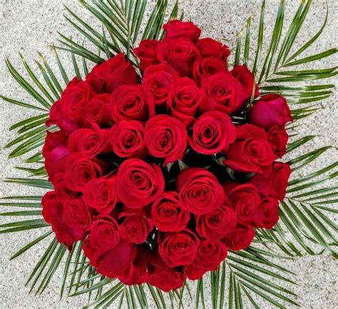imagenes todas rojas expresa tus sentimientos seg 250 n el color de las rosas