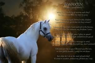 Horse poems carmelrowley com au