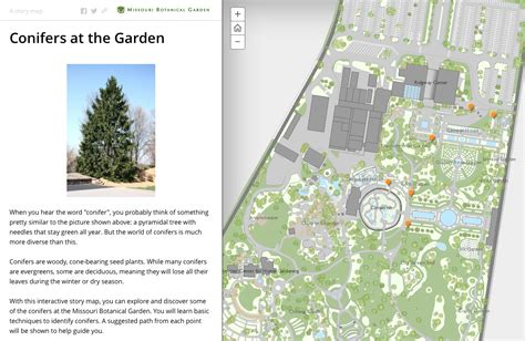 map missouri botanical garden missouri botanical garden map swimnova