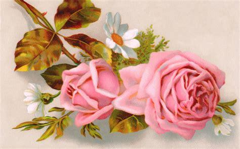 imagenes rosas para el dia de la madre rosa para el d 237 a de la madre wallpapers