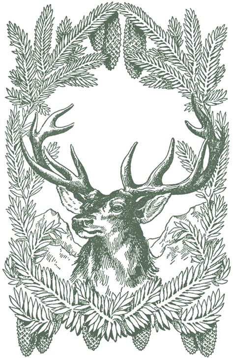 printable christmas deer free vintage christmas pictures deer the graphics fairy