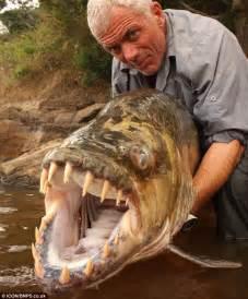 amazon big black friday sale is now live goliath tigerfish 171 creepy animals