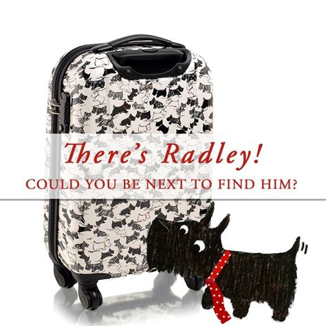 Radley Gift Card - 83 best images about radley on pinterest london scottie dogs and dog bag
