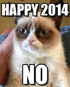 Grumpy Cat Meme Happy - happy 2014 grumpy cat meme on memegen