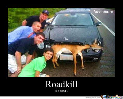 Meme Com Funny Pictures - roadkill memes image memes at relatably com