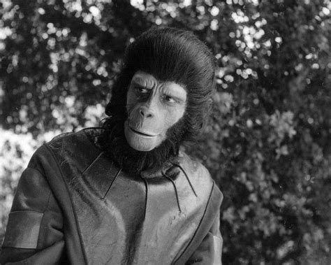 planet of the apes archive vol 2 beast on the planet of the apes books archives of the apes planet of the apes the tv series