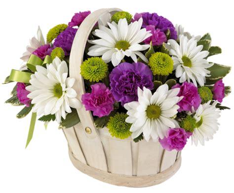 E M O R Y Fleurs 17emo122 gifs et fleurs en panier