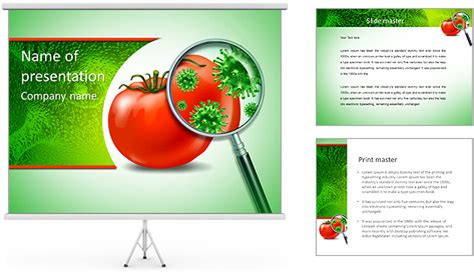 Food Safety And Inspection Symbol With A Magnifying Glass Food Safety Powerpoint Template