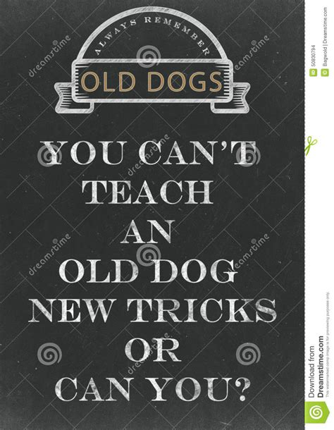 you can t teach an new tricks you can t teach an new tricks written on a chalkbo stock illustration
