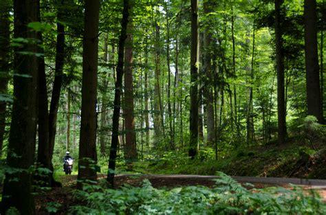 Motorradtour Ostalb by Ein Sonntag In Gr 252 N Unterwegs Auf Der Ostalb