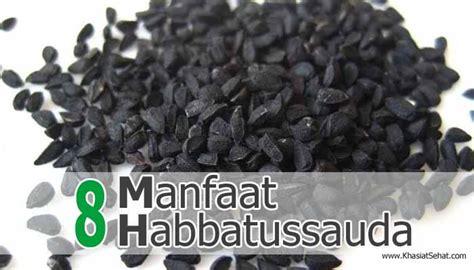 Minyak Jinten Hitam 8 manfaat habbatussauda atau jinten hitam untuk kesehatan
