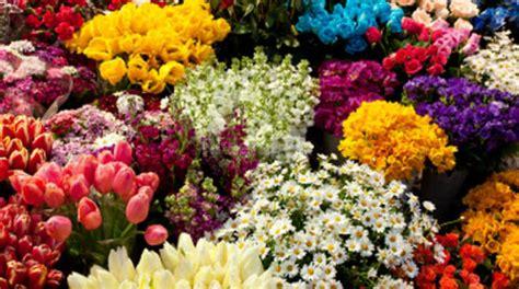 fiori di sanremo anche i fiori di sanremo al prestigioso congresso dei