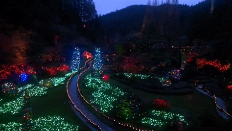 butchart gardens lights tour in and the buthchart gardens surfside