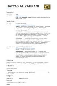 Sharepoint Developer Sle Resume by Sharepoint Developer Resume Resume Format Pdf